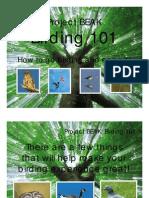 Birding 101 PowerPoint