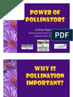 Power of Pollinators