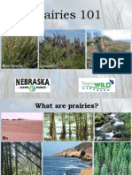 Prairies 101 PowerPoint