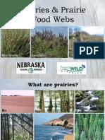 Prairies & Prairie Food Webs PowerPoint
