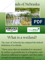 Wetlands of Nebraska