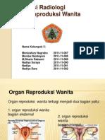Presentasi Radiologi