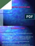 Rainwater Starch