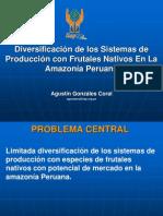 Sistema Produccion Frutas en Peru