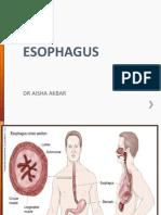 Esophagus Workshop