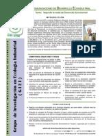 REDES Ecoindustrial Comunicacion Desarrollo Ecoindustrial 1