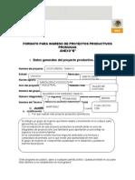 Formulacion de Proyecto de Taller de Costura Con Protocolo de SRA