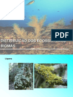 Distribuiodos ecossistemas