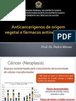 Anticancerígenos de origem vegetal e fármacos antineoplásicos