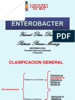 ENTEROBACTER.SP1