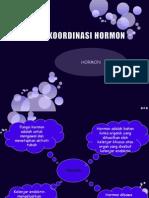 KOORDINASI HORMON.pptx