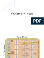 Translate Protein Synthesis