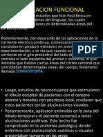 AREAS DE BRODMAN.pptx