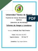 Informe de Hongos y Levaduras