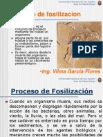 Cap 2 Proceso de Fosilizacion