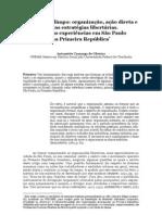 antoniette camargo de oliveira __passando a limpo  -- organização, ação, direta e outras estratégias libertarias