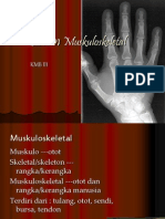 Sistem Muskulo TEMU-1