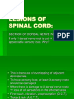 Lesions of Spinal Cord