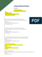 daftar industri di papua.docx