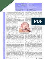 Bulletin Trêve de Dieu décembre 2001