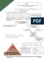 Ficha Informativa - Portugal no século XIII