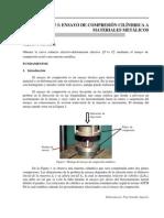 Guia._Practica_3._Compresion_axial.pdf