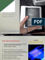 BIO3 - DNA Technology