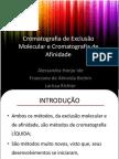 Cromatografia de exclusão molecular e Cromatografia de Afinidade - Sem videos