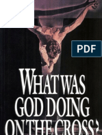 Alister e. Mcgrath What Was God Doing on the Cross