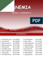 Modul 1 Anemia Klp 2