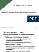 Chapter 3 - Organizational Culture