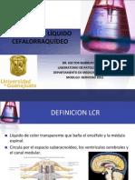 analsisliquidocefalorraquideofinal-110908142012-phpapp02