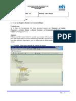 Manual de Usuario Del Proyecto de Implantacion de Sap R_3