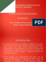 presentacion biorreactor