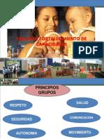 ENFOQUE Y PRINCIPOS INICIAL ULTIMO 2011.ppt