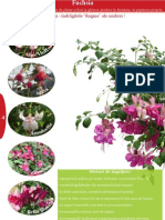 Catalog Fuchsia 2012 Plant-shop