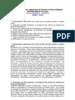 Informe Brasil 01-2013