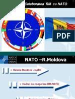 Relatiile RM Cu NATO