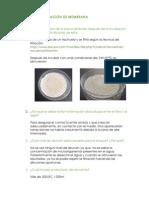 Alba Gándara Filtración Membrana.pdf