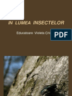 In Lumea Insectelor.
