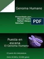 Proyecto Genoma Humano, presentación