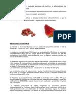 Frutilla - Nuevas técnicas de cultivo