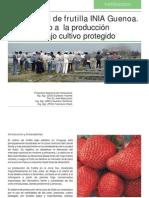 Frutilla INIA Guenoa