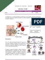 Ft Nc2ba 8 Sistema Imunitario