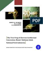 Tree Frog Final Report 2008