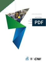 Biocombustíveis na Indústria Automobilística Brasileira.pdf