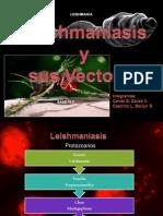Leishmaniasis y Sus Vectores