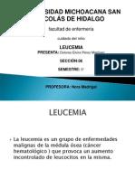 Leucemia Expo