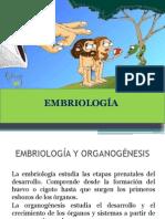 unidad18embriologageneralyorganognesis-121121135241-phpapp02