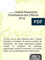 PI-3 Bovina